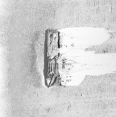 Side-Scan Sonar image of modern wreck